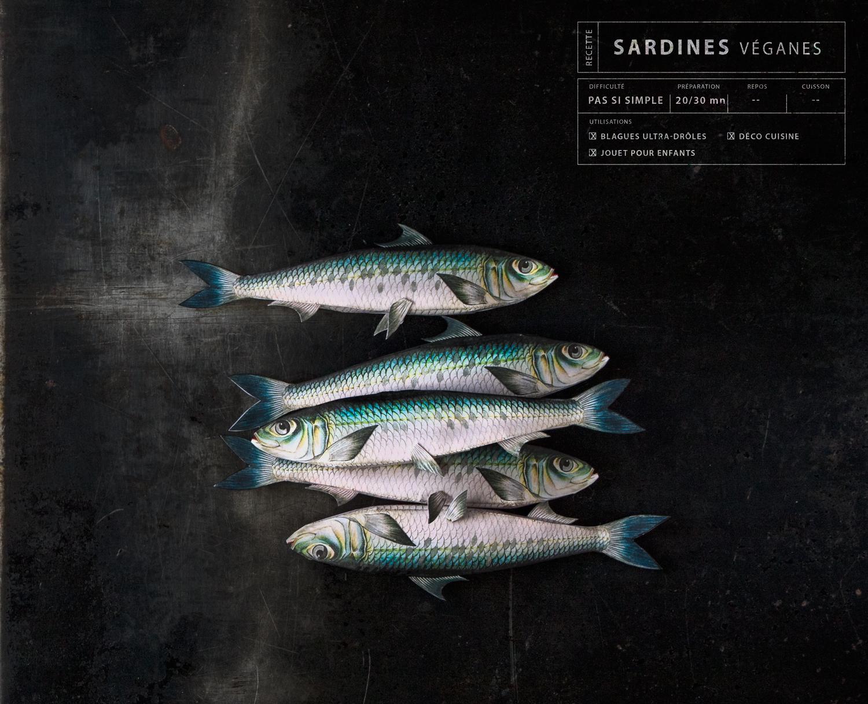 Paper sardines-3-©Bluette.fr
