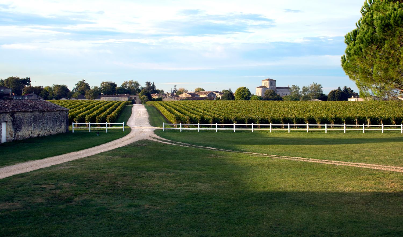 Enceinte-Chateau-des-Arras©Bluette